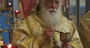 Владыка Стефан (Нагребецкий)